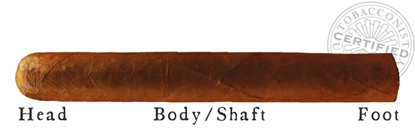 Cigar Anatomy - Wrapper Binder Filler